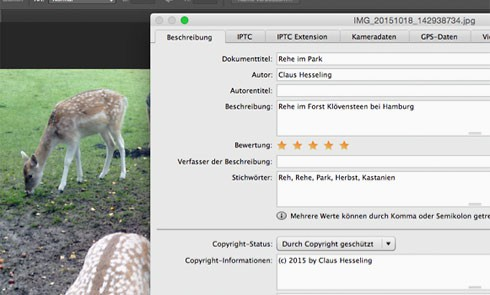 Screenshot: XMP-Metadaten am Beispiel von Photoshop CS6